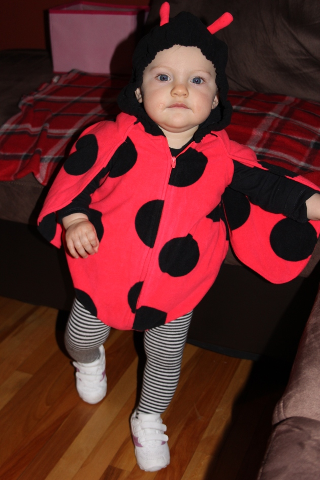 How many trick-or-treaters did you have last night? We had one little lady bug.